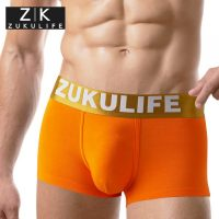 free-shipping-men-s-panties-modal-u-bag-plus-size-boxers-underwear-4088