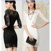 free_shipping_women_s_fashion_sexy_sheath_lace_dress_casual_dress_for_promotion.jpg_200x200